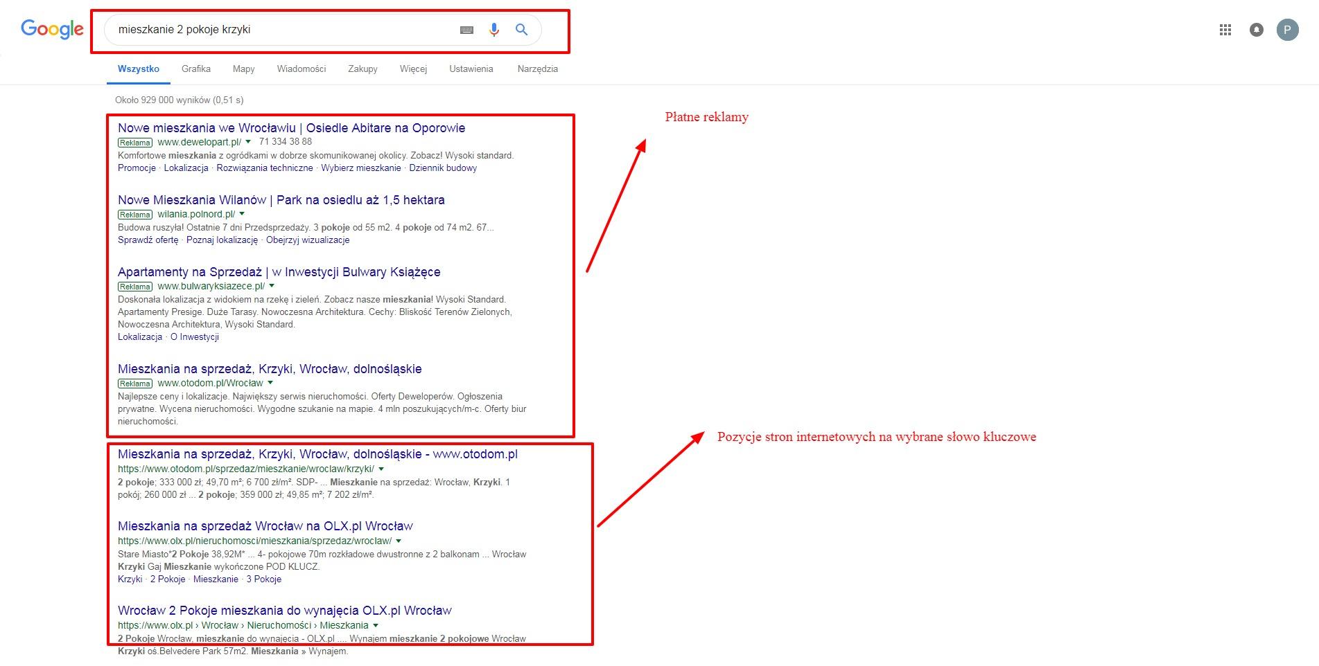 wyszukiwarka google z miejscem na płatną reklamę i pozycję organiczną